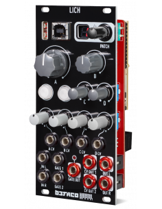 Lich Assembled Module